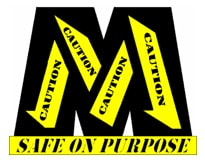 Safe on Purpose Logo